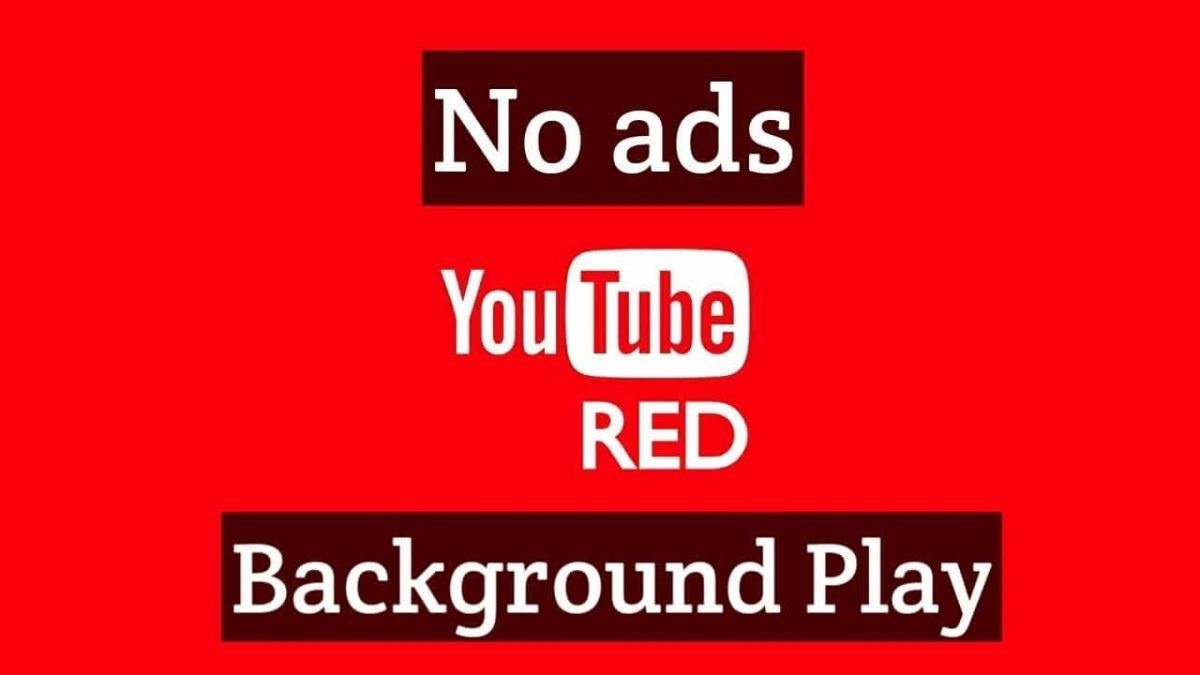 Photo of YouTube Red Mod Apk Offline & Background Play (No Ads) 2020